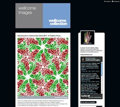 Twitter Advent Calendar: Day 20, Wellcome