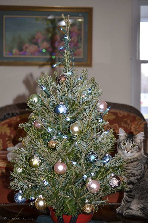 Bertie stands next to her first Christmas tree, photo by Elizabeth Ruffing