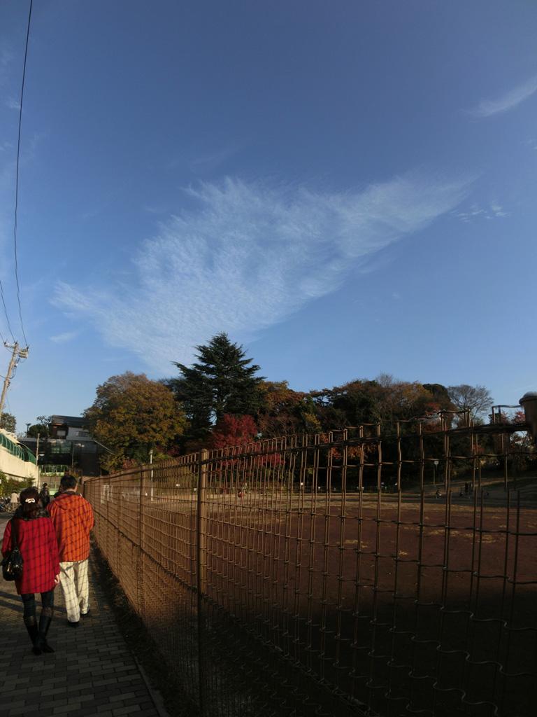 2011/12/10 カシオ EX-ZR200 谷中銀座