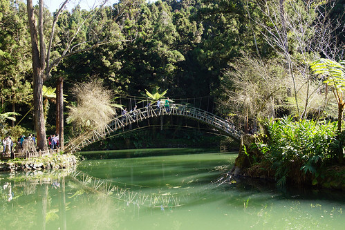 The Landmark of Xitou- University Pond