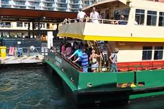 Ferry, com qui agafa un bus