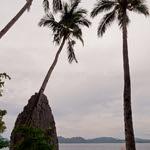 Entalula Island, Tour A + B - El Nido, Palawan (111201-44)