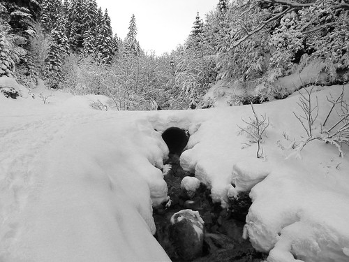 1 Le ruisseau DSCN9215