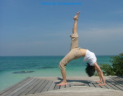 Know More about Yoga Instructor Training