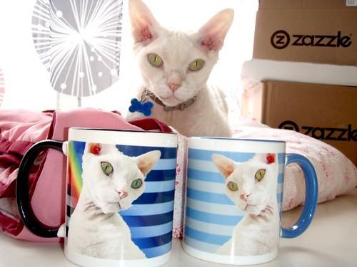 Casper mugs