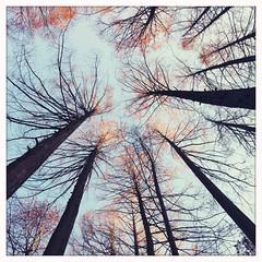 Mon Jan 09 05:03:45 -0500 2012