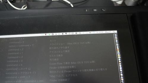 _DSC9155.JPG