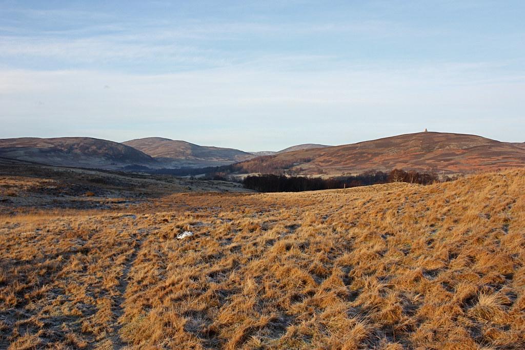 Morning sunshine in Glen Esk