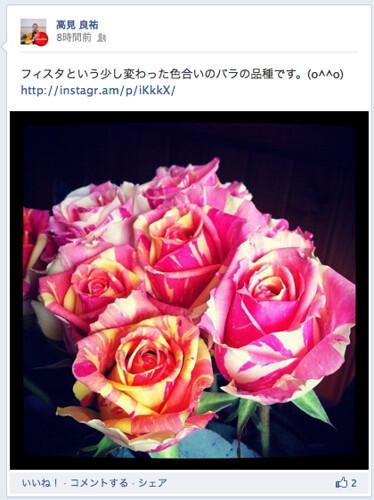 instagram1-5