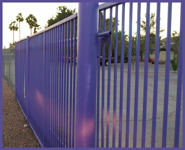 Purple fence on friday flickr photo sharing