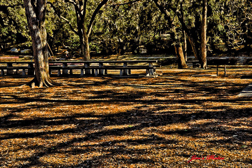 Happy Bench Monday 01.30.12