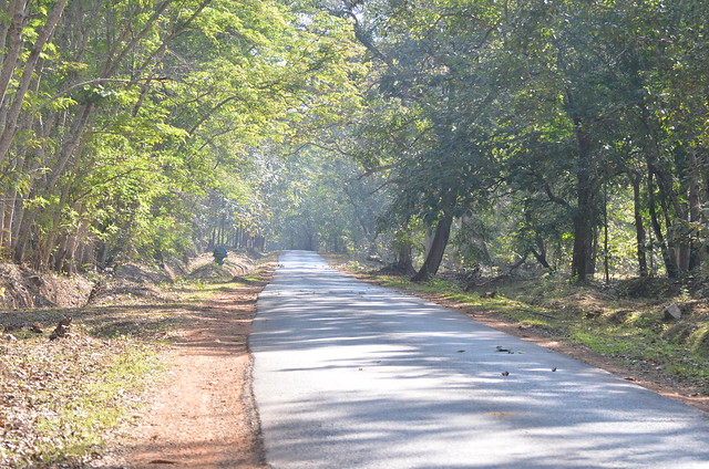 On the way to Haliyal, Dandeli, 29JAN2012
