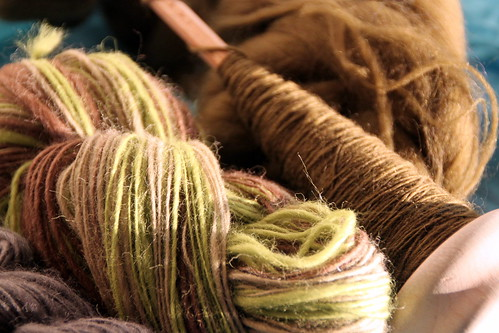 the evolution of yarn.