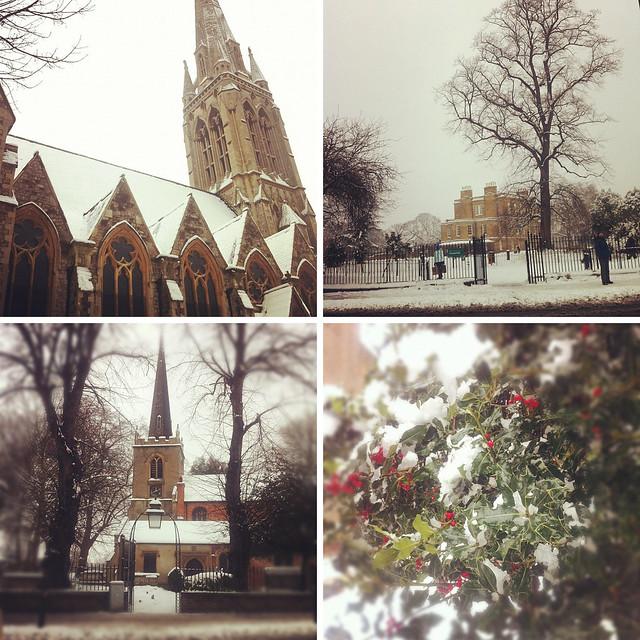 snowy Stokey