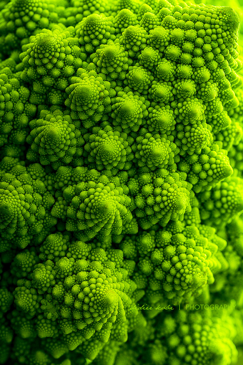 Green Fractal by Didier Kobi