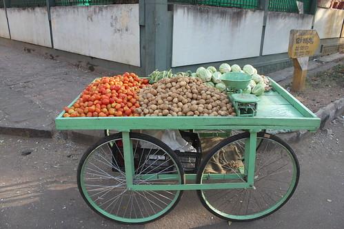 Mysore India 009