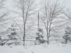 IMG_1766 snowy Hirafu village