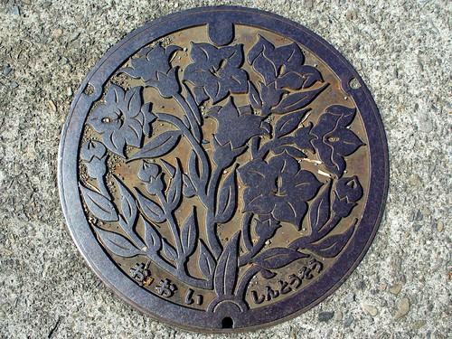 Ōi, Saitama manhole cover (埼玉県大井町のマンホール)