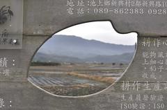 20120118-米粒.JPG-1