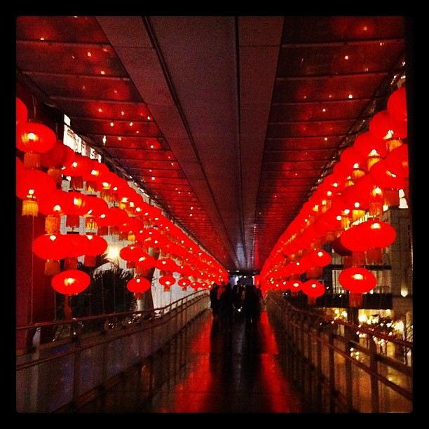 #red #iphoneography #iphoneonly #lights #赤