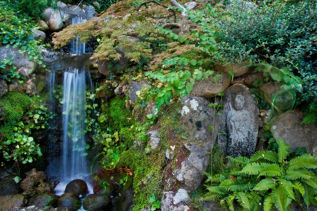 Buddha Waterfall Mix