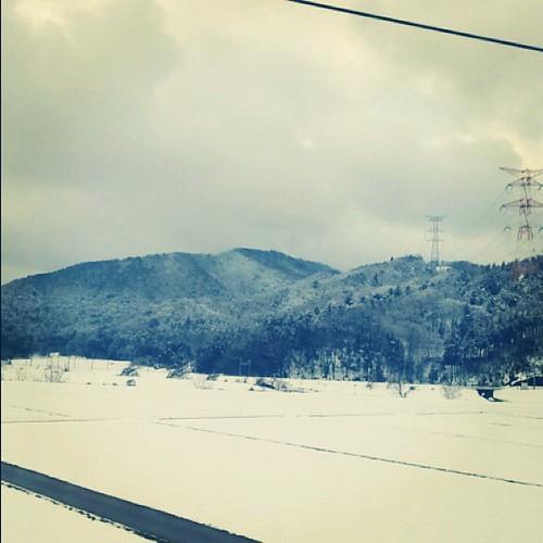 さっきまで無かった雪!ここどこ?