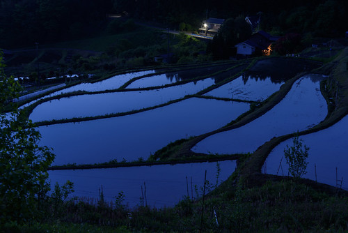 field japan sunrise 日の出 田園 棚田 大阪府 豊能郡