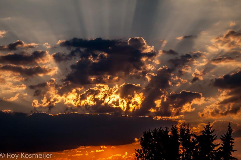 Sunset_Veluwe