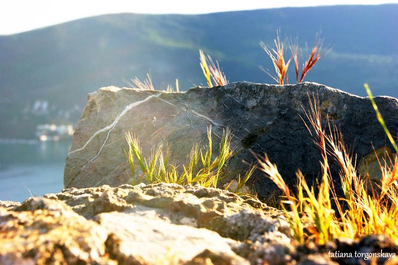 Камни на бастионе