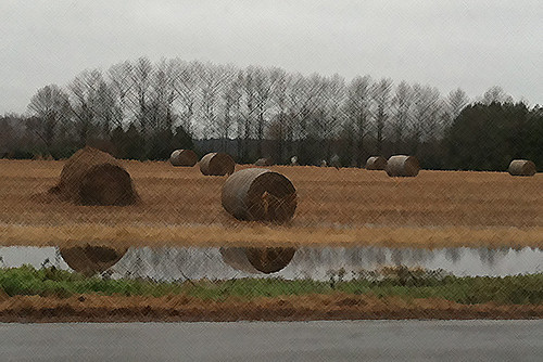 [326/365] Hay Field by goaliej54