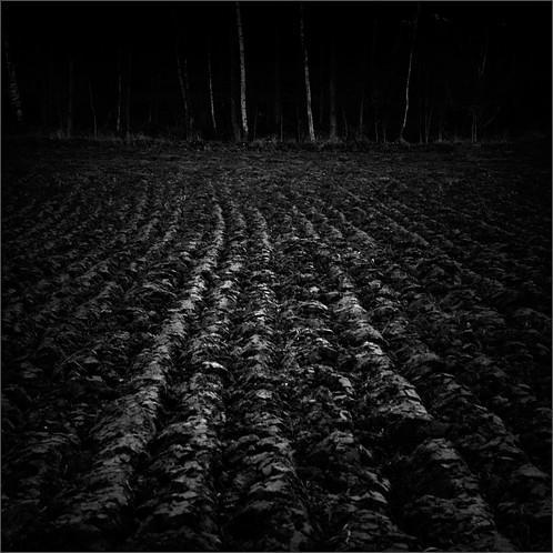 bw black field photoshop suomi finland dark square landscape helsinki woods nikon scenery darkness plough malmi 2011 500x500 ok6 d700 ollik 20111126