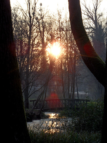 Schlosspark Ringenwalde (Uckermark)