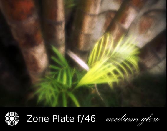 zp2411-06