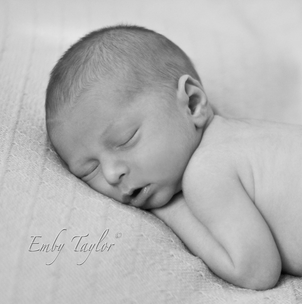 Best Newborn Photographer concord kannapolis huntersville lake norman family photography