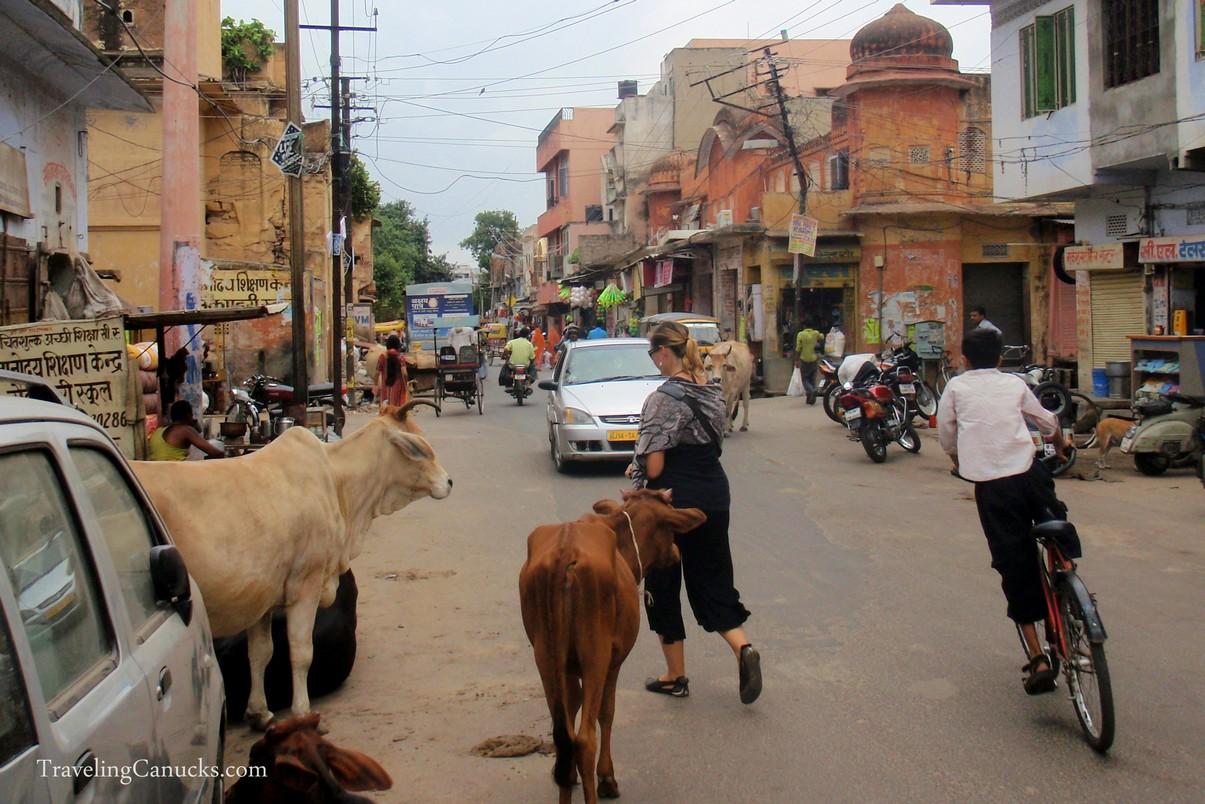 Backstreets of Jaipur, India