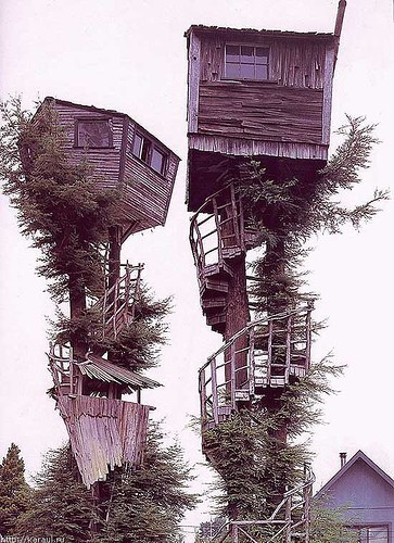 treehouse_016