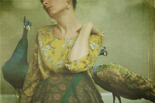 342 | 365 by Lady Miss Elle