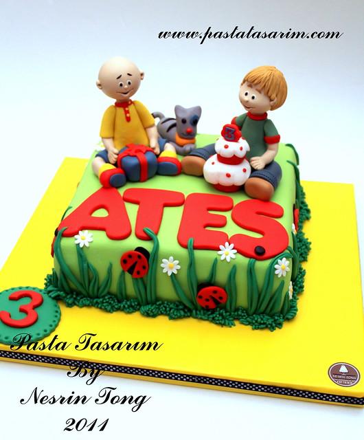 CAILLOU CAKE - ATES BIRHTDAY