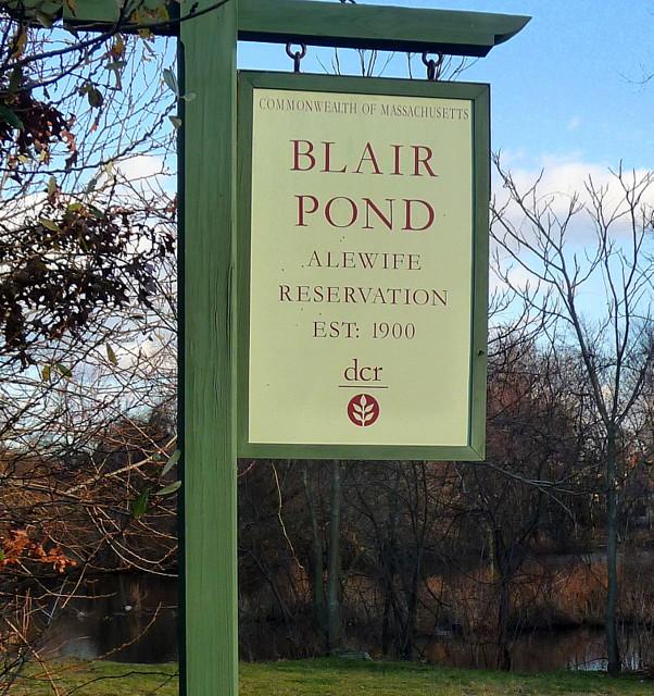 Cambridge Highlands - Blair Pond, Cambridge, MA
