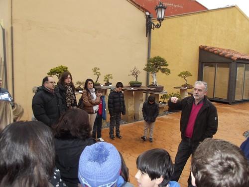 Museo del Bonsai (3)