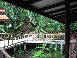 Tortuguero Evergreen Lodge