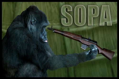 SOPA Gorilla