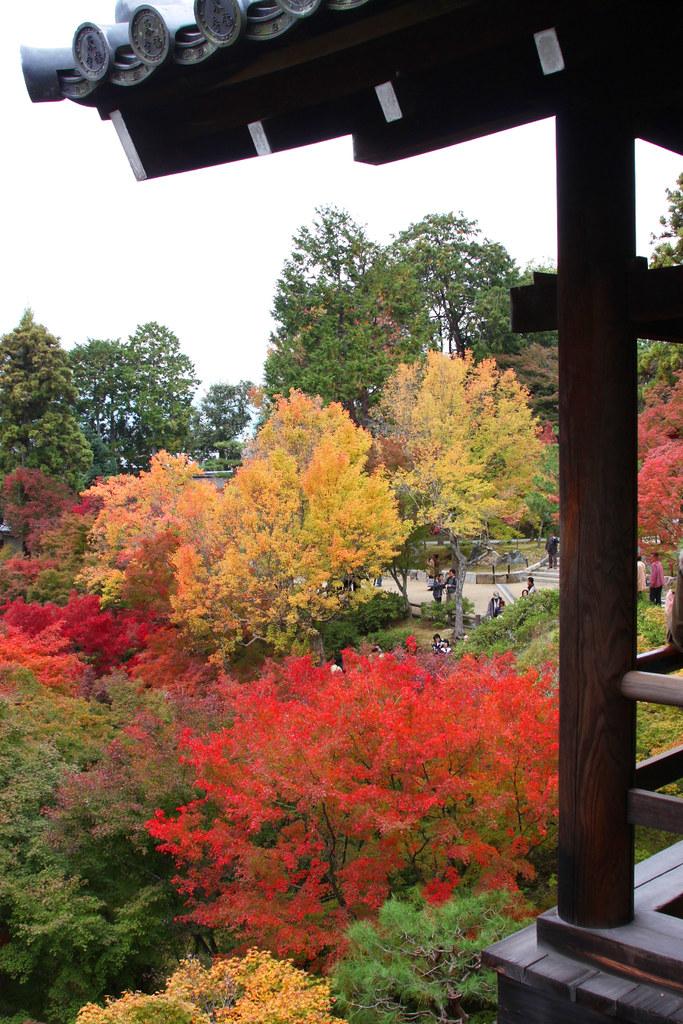 Kyoto Rakunan Guide (3)