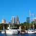 Tampa Marine Living