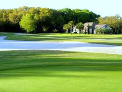 Longwood Golf Course, Palmetto Course