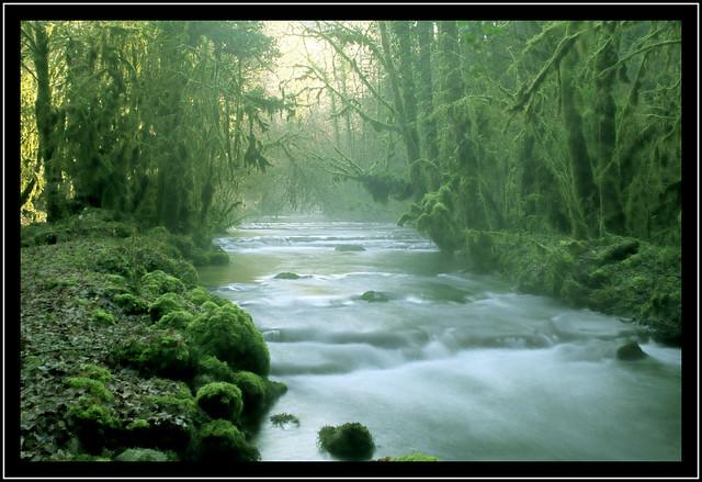 Ruisseau de Noirefontaine