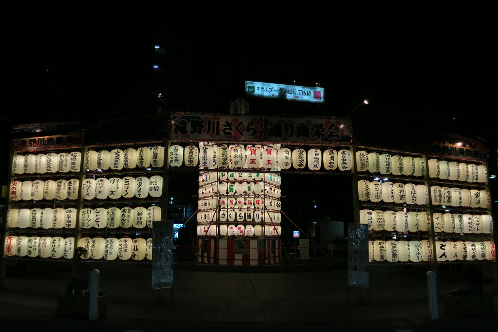 the paper lanterns for new year