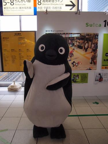 大崎 SUICA 10周年記念展示 - SUICA ペンギン