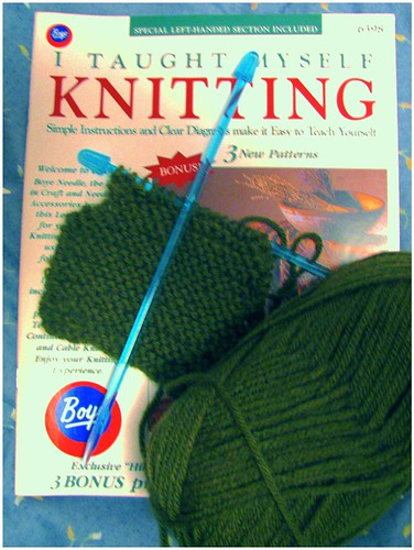 12-29-11 Knitting Lessons by roswellsgirl