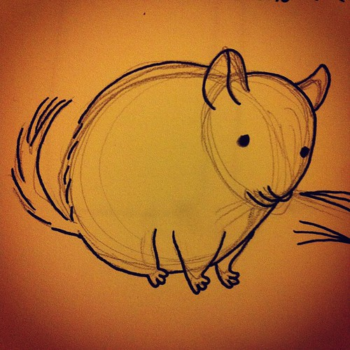 Trying to draw a chinchilla.
